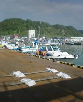 東静内漁港