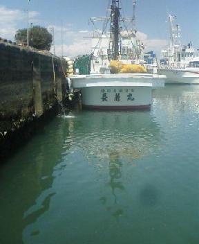 焼津・小川漁港